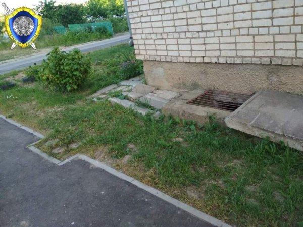 Четырехлетняя девочка выпала из окна второго этажа в Оршанском районе