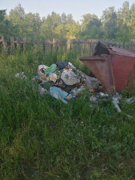 Фотофакт: вопиющая бесхозяйственность на территории Кистиневского сельсовета