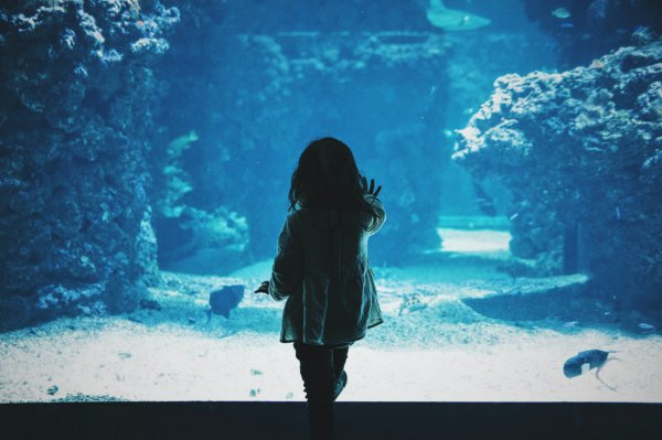 Житель Климовичей истязал трёхлетнюю приёмную дочь