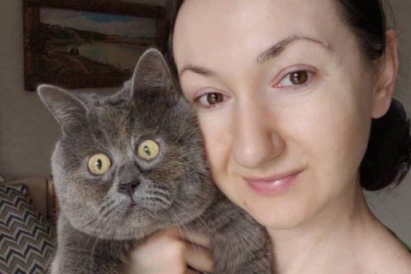 Кот из Ростова с вечно удивленным лицом покорил весь мир