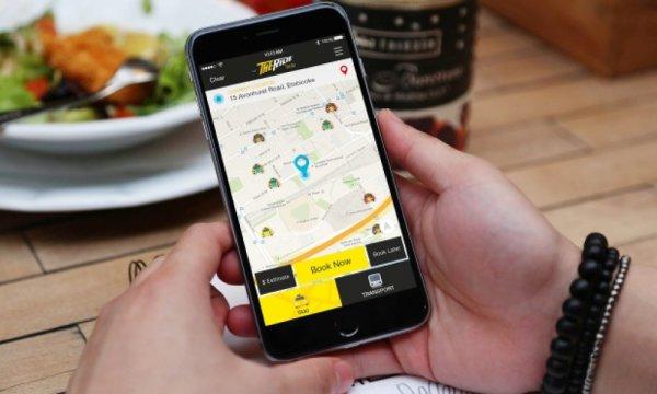 Появилось мобильное приложение, которое в жару прокладывает маршрут в тени