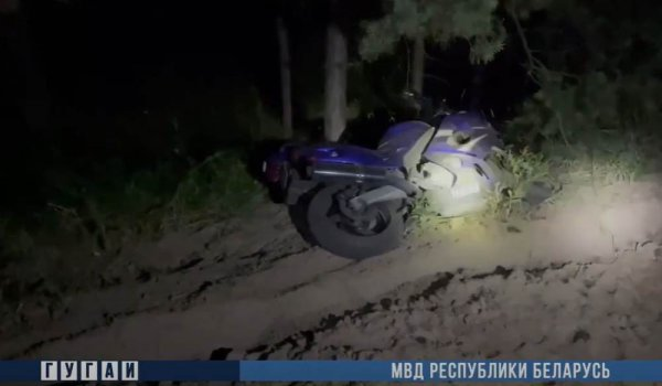 В Речицком районе мотоциклист погиб после аварии с лосем
