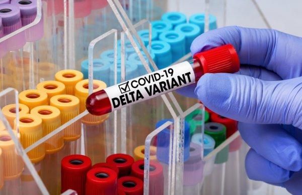 В ВОЗ подтвердили, что индийский штамм коронавируса в два раза заразнее
