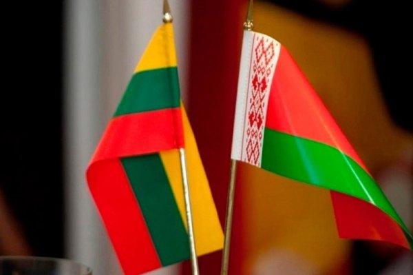 Глава Еврокомиссии назвала наплыв мигрантов в Литву через Беларусь «политически мотивированным»