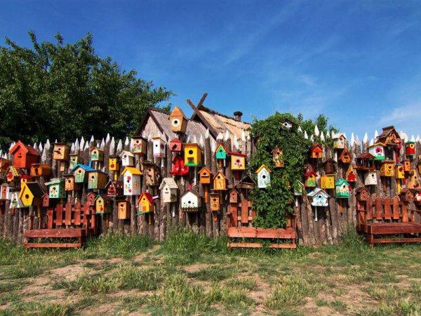 Поездка в Казачью станицу Атамань из Новороссийска