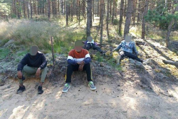 За сутки более ста нелегальных мигрантов задержали на границе с Беларусью