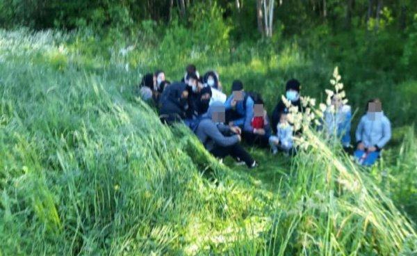 На границе Литвы и Беларуси за последние сутки задержали ещё 121 мигранта