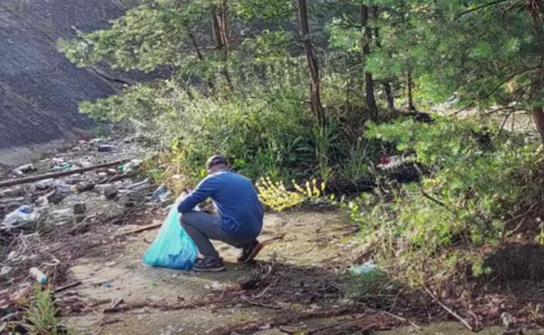 Польские власти разыскали белоруса, который просто так убирал лес