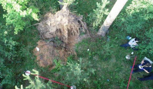 В Смолевичском районе бизнесмен вывез в лес мужчину, застрелил и закопал