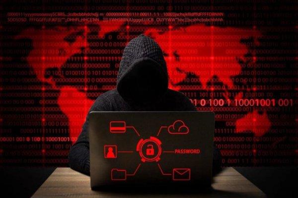 Хакеры снова взломали базу данных МВД Беларуси