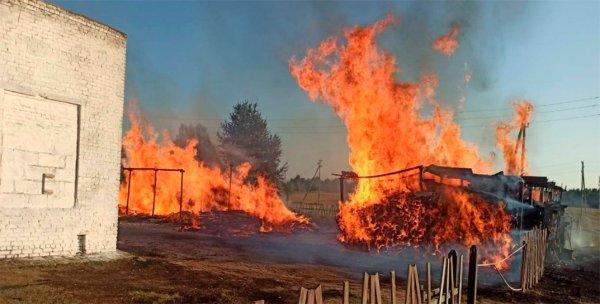 В Калинковичском районе огонь уничтожил два навеса с дровами