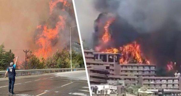 Турция объявила зоной бедствия регионы, которые охвачены пожаром