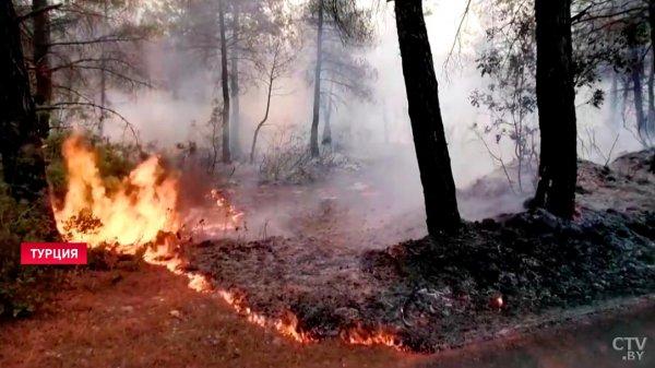 Властям Турции удалось взять пожары под контроль