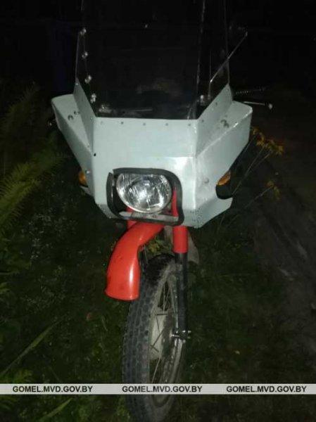 В Рогачевском районе мотоциклист сбил косулю, мужчина в больнице