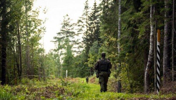 За прошедшие сутки на латвийско-белорусской границе задержано 200 мигрантов