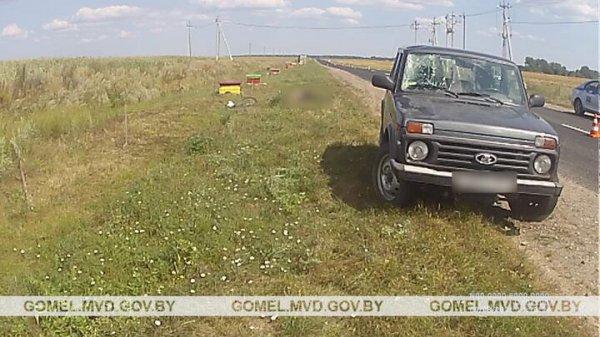 В Лоевском районе Lada насмерть сбила велосипедиста