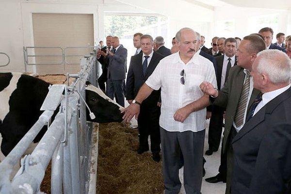 Продолжается официальный визит Светланы Тихановской в Норвегию