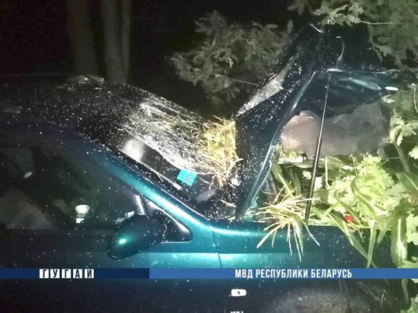 В Дрогичинском районе в результате ДТП погиб мотоциклист