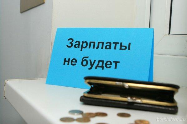 В Беларуси работники 445 организаций столкнулись с задержками зарплат