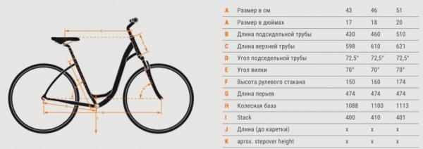 Женский велосипед: основные отличия и как выбрать размер?