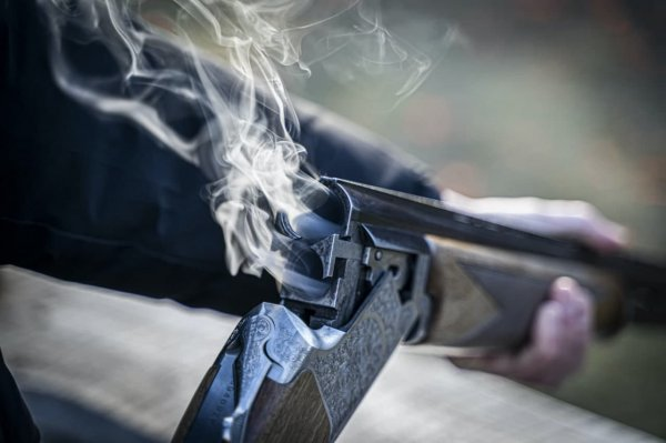 В Буда-Кошелевском районе мужчина из-за ревности застрелил жену
