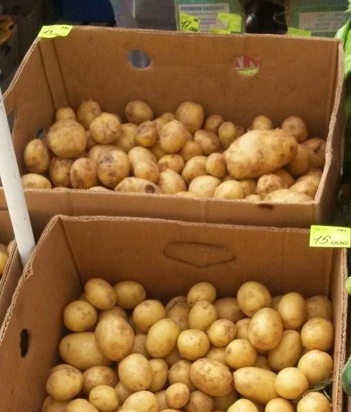 В Беларуси нехватка собственного картофеля