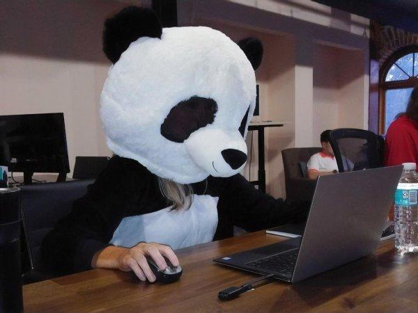 Nasdaq на Таймс-сквере в Нью-Йорке поздравил репрессированную в Беларуси компанию PandaDoc