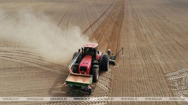 Лукашенко распорядился закончить посев озимых до конца месяца и работать ночью