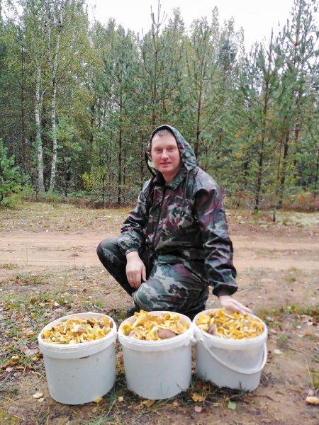 В Беларуси небывалый урожай грибов - фоторепортаж